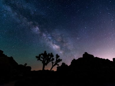 Experience The Beauty Of A Truly Dark Night Sky At Joshua Tree National Park Night Sky Festival